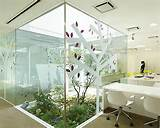 indoor gardening on pinterest indoor gardening vertical gardens an