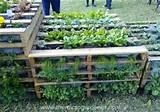 ... pallet vertical garden source diy wood pallet vertical garden ideas