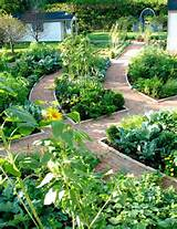 elegant garden paths plants flowerbed renovation pinterest