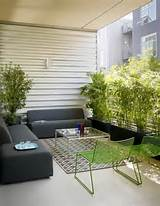 outdoor privacy ideas garden pinterest