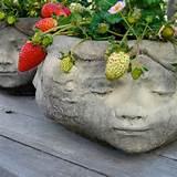 Southern California Gardening: Small-Space Vegetable Gardening ...