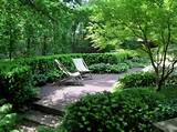 ... ideas with bushes crushed stone evergreen planting garden gravel