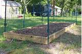 ... _out-of_your_garden_protect_vegetable_garden_build_a_simple_fence29