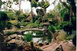 Wonderful Japanese Garden ideas - Beautiful Home Decorating Idea