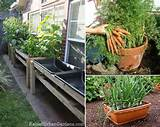 Ideas for Growing Vegetables in Small Spaces And Yards | Home Design ...