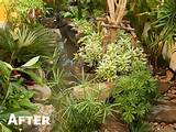 find garden design jungle designinterior xyz