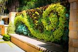 External Living Wall Design