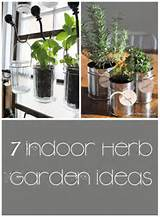 indoor-herb-garden-ideas-1.jpg