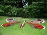 Amazing+garden+lov | Amazing Gardens Amazing Garden Ideas