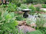 natural looking garden with a small pond and a fountain or bird bath