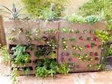 : Unique home garden ideas with vertical garden diy decoration - Tips ...