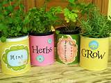 ... container gardens make easy, economical gifts | The Micro Gardener