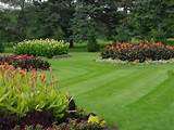 archive for the lawn care rockland ny category