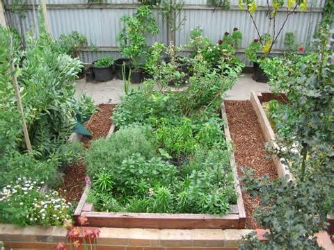 raised gardens designs on Raised Garden Designs Woodworking Project ...
