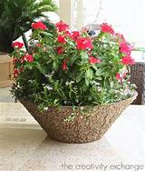 Large bowls are great for outdoor table centerpieces. You can slide in ...