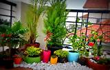 Best Small Balcony Garden Ideas - Parchitectural