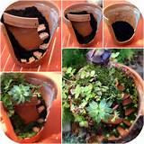 ... pot fairy gardens for these gardens i use broken terracotta flower