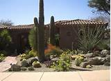Great Xeriscape Landscaping Arizona 728 x 542 · 109 kB · jpeg