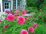 Flower Garden Design Ideas | Gardens | Pinterest