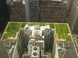 eGFI – For Teachers » Lesson: Green Roof Design