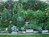 You can get ideas for your own garden by looking at the shots sent in ...