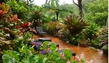 Small Tropical Theme Home Garden Design | 7 Home Ideas