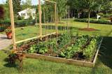 Raised beds are an excellent way to grow healthier plants in a smaller ...