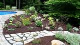 full shade landscaping ideas for under a deck gardens m garden