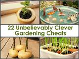 22 Unbelievably Clever Gardening Cheats