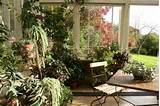 20 Winter Garden Designs Ideas » Photo 11