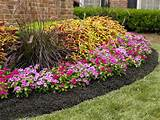 gu a sobre el acolchado para plantas o mulching jardiner a