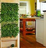 indoor garden zen home ideas pinterest