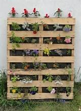 Pallet Gardening | Gardens | Pinterest