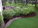 exterior ideas landscaping mulch 10 essential lawn care tips for your
