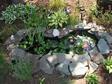 Fish Pond Liners: Awesome Decoration for Your Garden: Fish Pond Liners ...