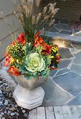 autumn flower planting choices | gardening | Pinterest