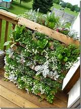 diy vertical pallet garden wooden pallet furniture