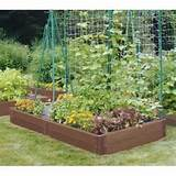 terrace and garden raised bed gardening rumbling plant nice small