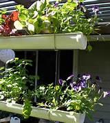 container gardening patio container vegetable garden ideas ideas