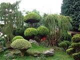 Small Japanese Garden Designs | OnHomes.org