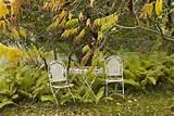 holidays seasonal tips ideas autumn crafts fall gardening ideas