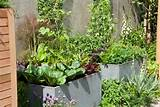 Planting Vegetables Container Gardening Ideas - Home Inspirations