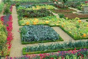 Gardening Tips to Grow Organic Vegetables in Your Garden