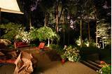 some cool backyard and garden lighting ideas