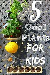 ... kids.-Great-plants-for-kids-and-easy-tips-for-gardening-with-kids