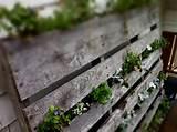 vertical pallet garden deck planter pallet planter