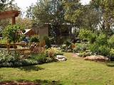 Hill Country Style Landscaping in Houston, The Woodlands, Cypress TX