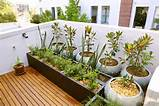 your small gardening space with these big ideas balcony garden jpg