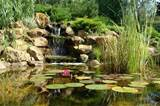 21 Garden Design Ideas, Small Ponds Turning Your Backyard Landscaping ...