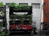 Apartment Balcony Vegetable Garden Ideas   CDxND.com - Home Design in ...